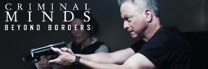 Criminal Minds: Beyond Borders banner