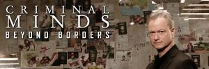 Criminal Minds: Beyond Borders banner