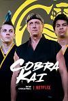 Cobra Kai (2018) cover