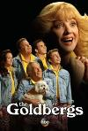 The Goldbergs (2013) cover